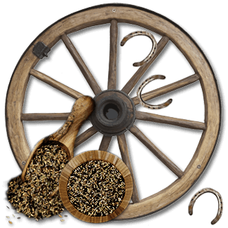wagon_wheel_3
